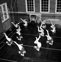 Gymnastiserande bruksdamer