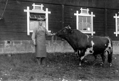 Ladugårdsförman Gottfrid Nordström