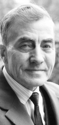 Viktor Boström