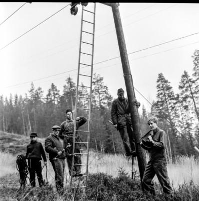 """""""Elljusaktivister"""" Torbjörn Lindblad, Gunnar Sandberg, Olle Viklund, Karin Sandberg"""