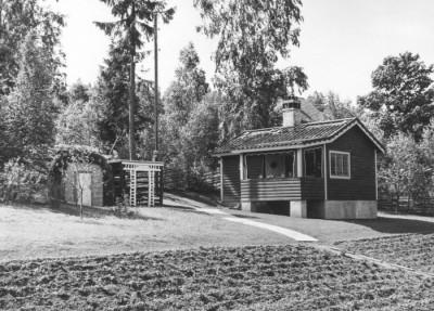 Ivars trädgård