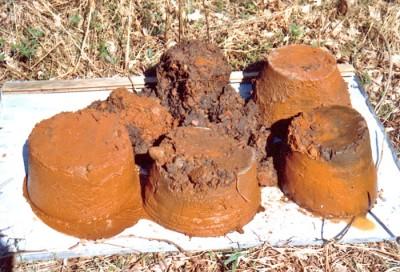 Utvinning av myrmalm