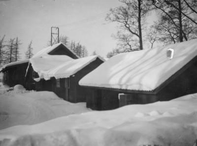 Snötyngd Vikmanshyttesåg
