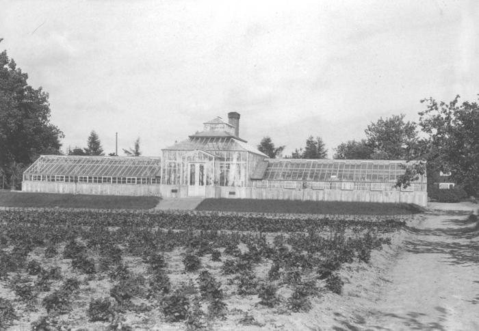 Trädgården/Växthus